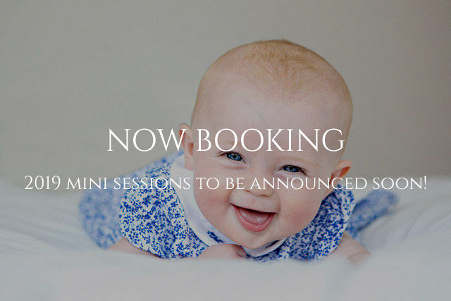 Now Booking 2019 Mini sessions